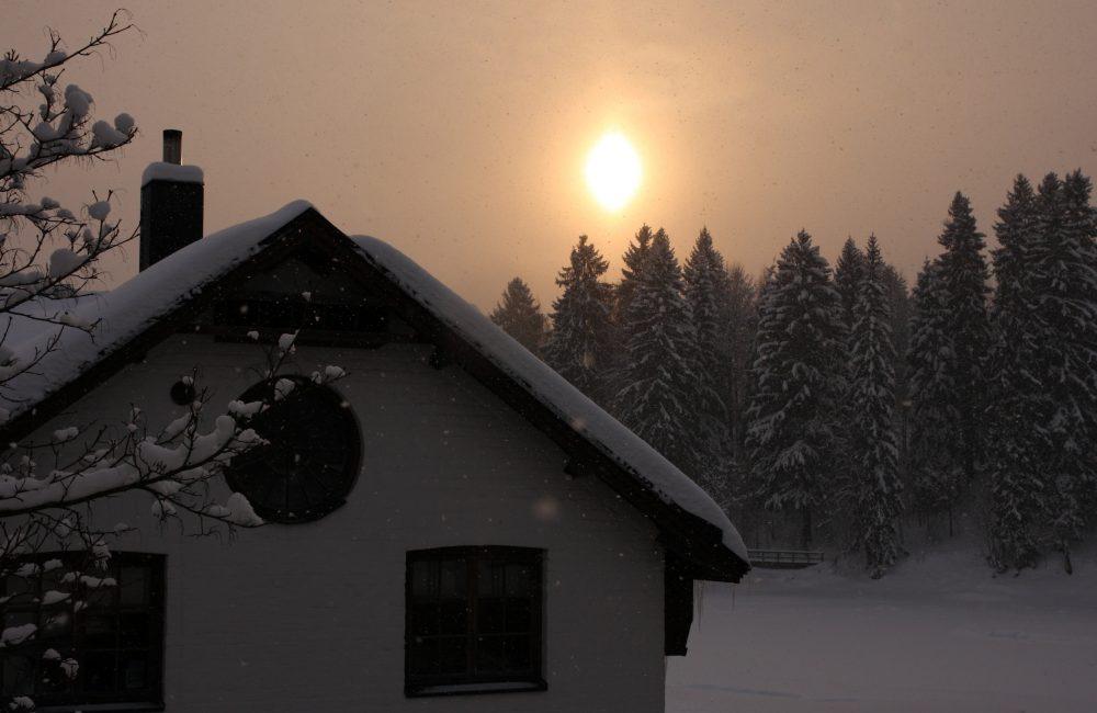 Viilatehdas Talvi
