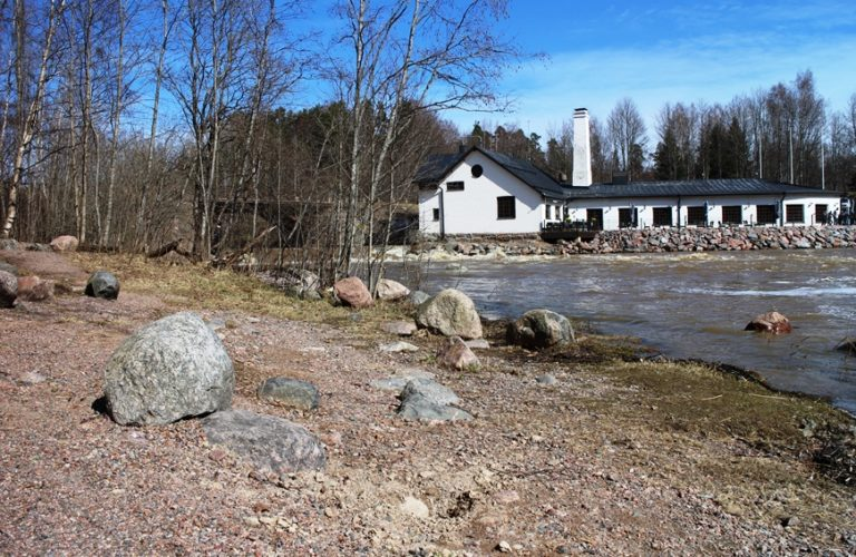 Kuninkaan Lohet yllätti Vantaankoskella – vierailimme kevätpäivänä!